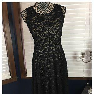 Soprano Black Lace Fit & Flare Dress Small